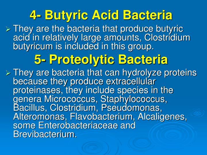 4- Butyric Acid Bacteria