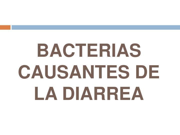 BACTERIAS CAUSANTES DE LA DIARREA