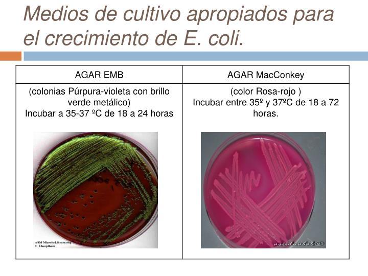 Medios de cultivo apropiados para el crecimiento de E. coli.