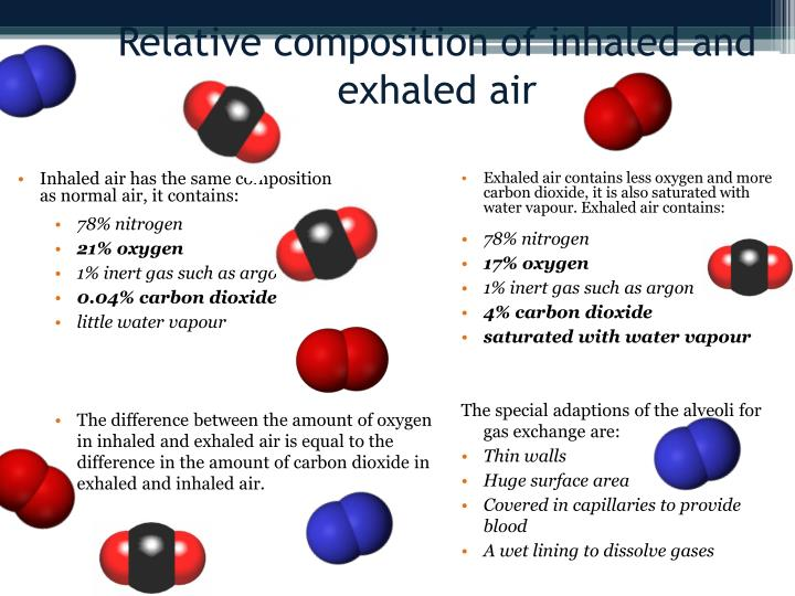 Inhaled air has the same composition as normal air, it contains: