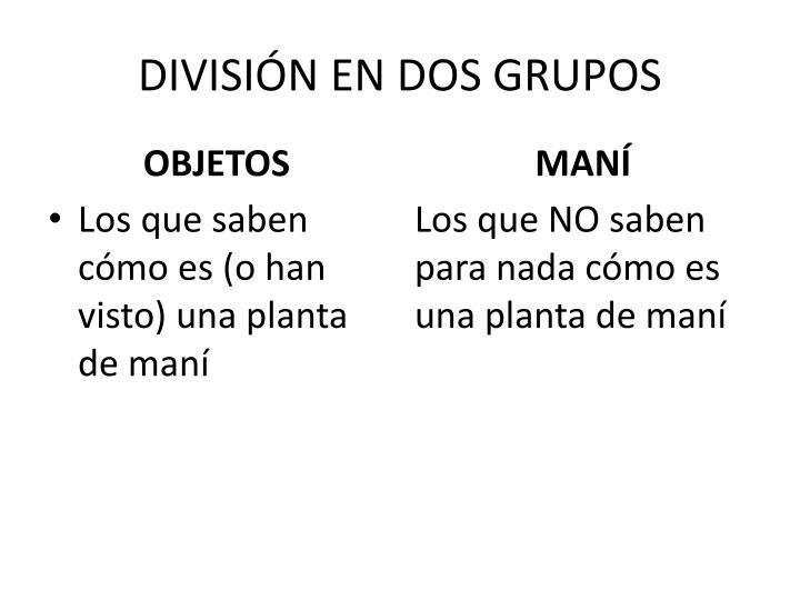 DIVISIÓN EN DOS GRUPOS