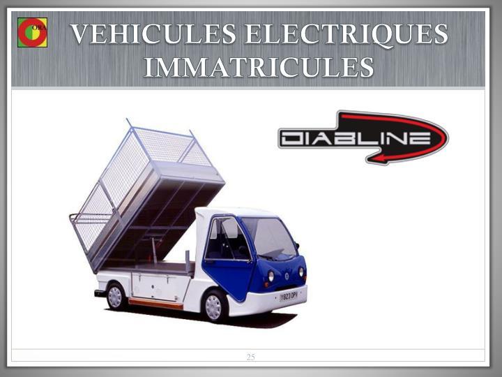 VEHICULES ELECTRIQUES IMMATRICULES