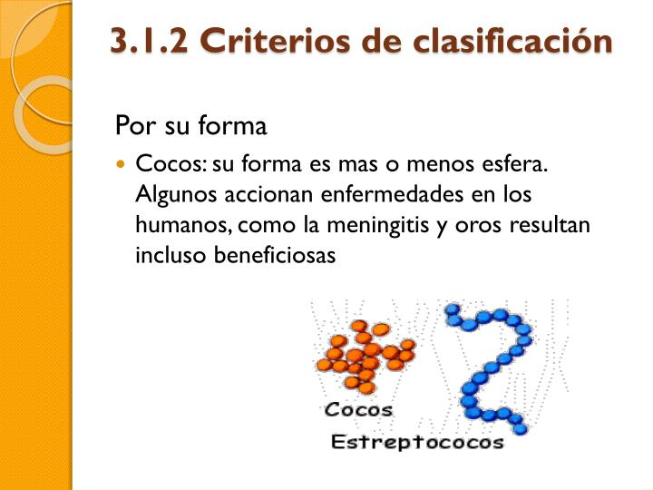 3.1.2 Criterios de clasificación