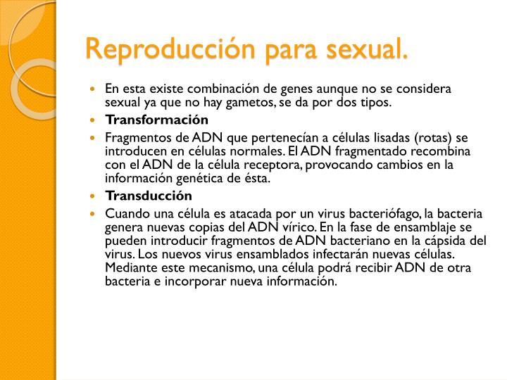 Reproducción para sexual.