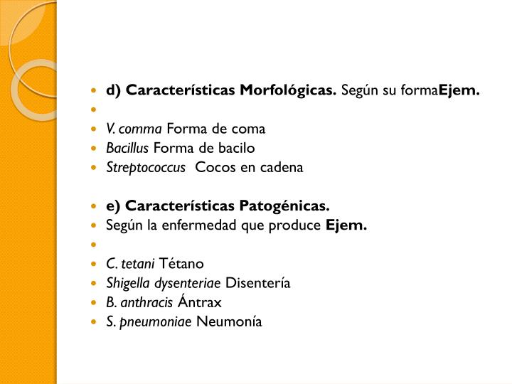 d) Características Morfológicas.