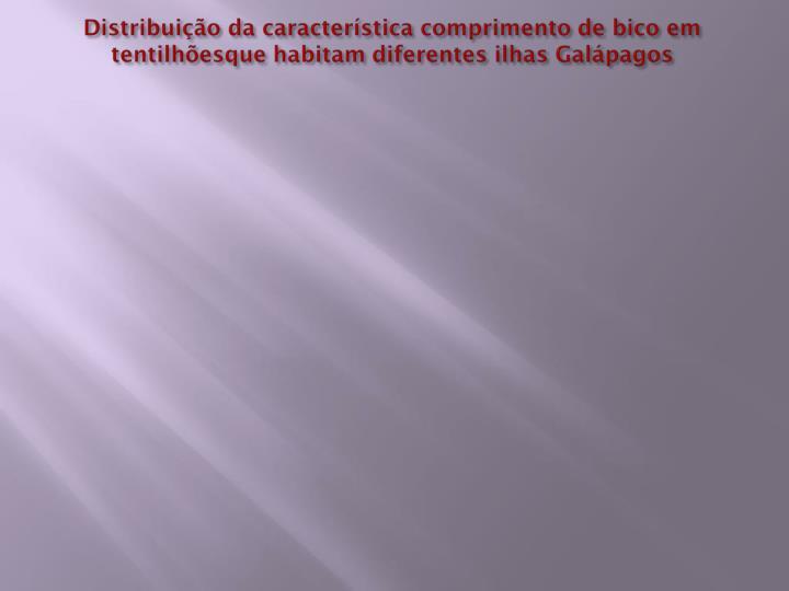 Distribuição da característica comprimento de bico em