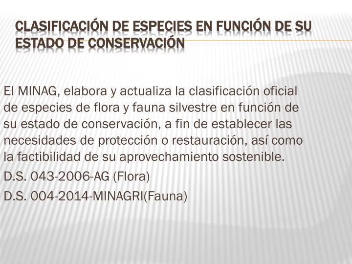 El MINAG, elabora y actualiza la clasificación oficial de especies de flora y fauna silvestre en función de su estado de conservación, a fin de establecer las necesidades de protección o restauración, así como la factibilidad de su aprovechamiento sostenible.
