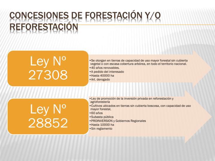Concesiones de forestación y/o reforestación