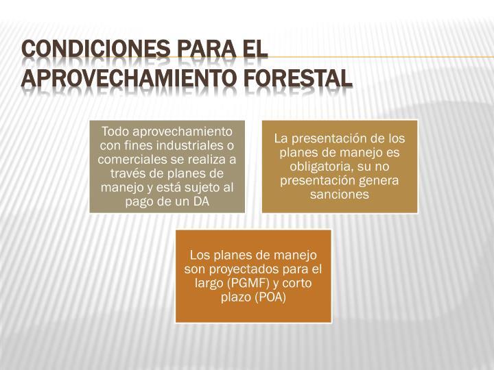 Condiciones para el aprovechamiento forestal