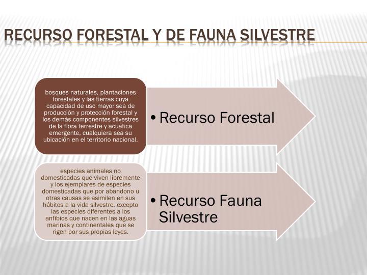 Recurso Forestal y de Fauna Silvestre