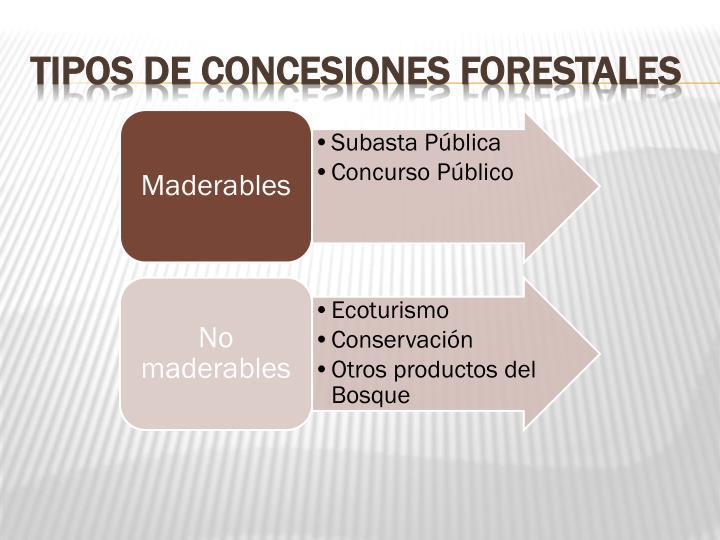 Tipos de Concesiones Forestales