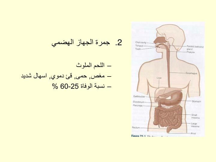 جمرة الجهاز الهضمي