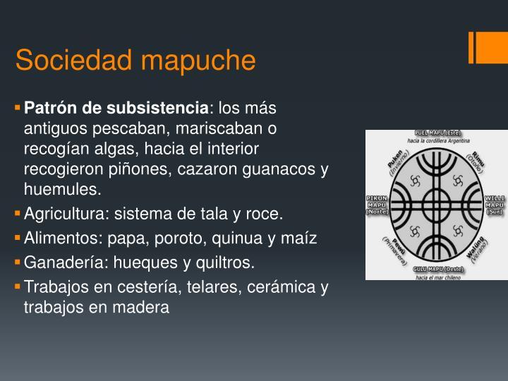 Sociedad mapuche