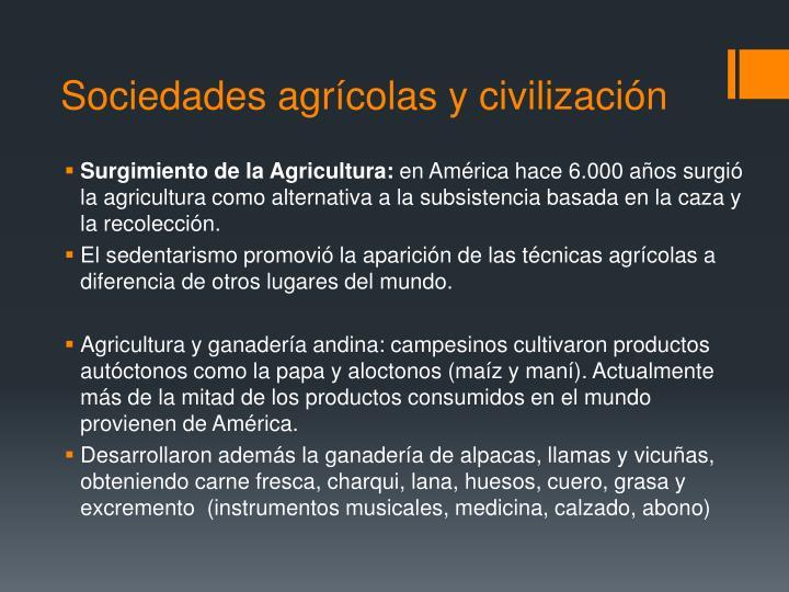 Sociedades agrícolas y civilización