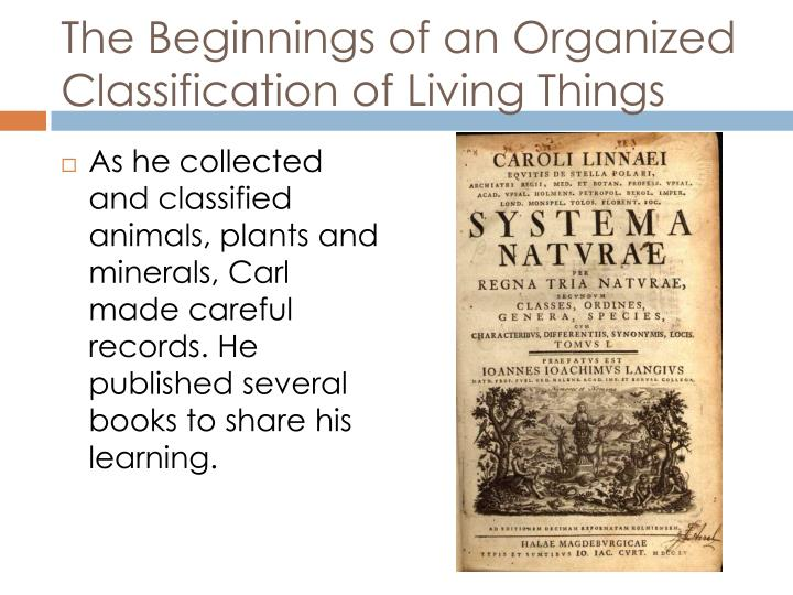 The Beginnings of an Organized Classification of Living Things