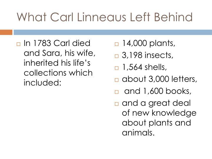 What Carl