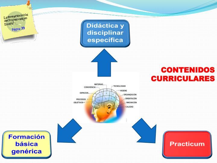 Didáctica y disciplinar específica
