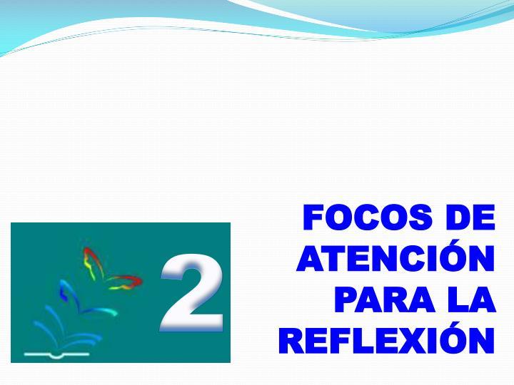 FOCOS DE ATENCIÓN PARA LA REFLEXIÓN