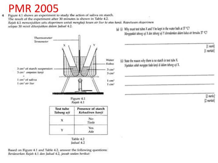 PMR 2005