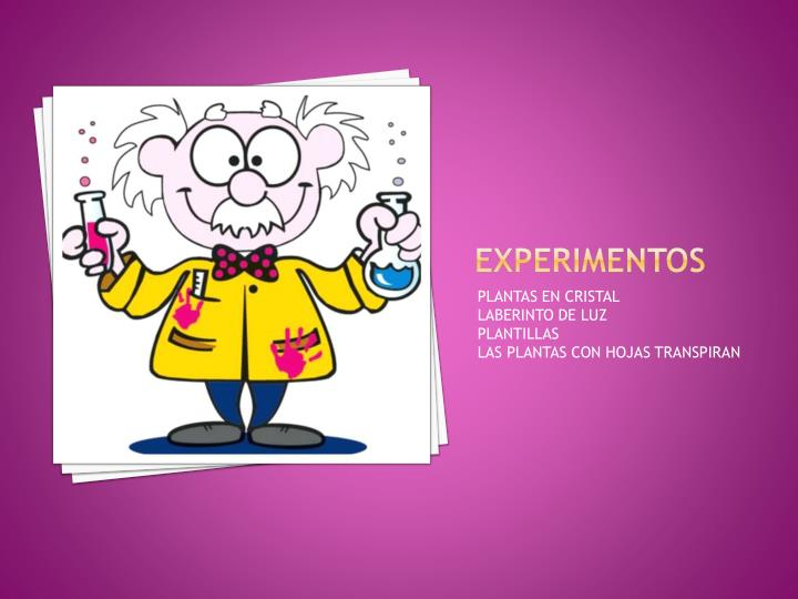 EXPERIMENTOS