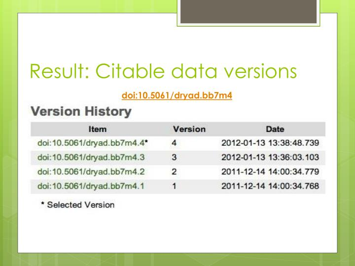 Result: Citable data versions