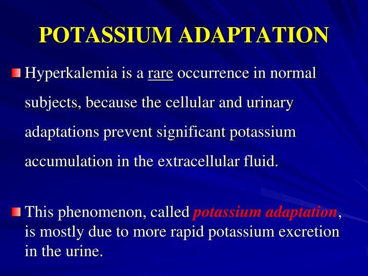 POTASSIUM ADAPTATION