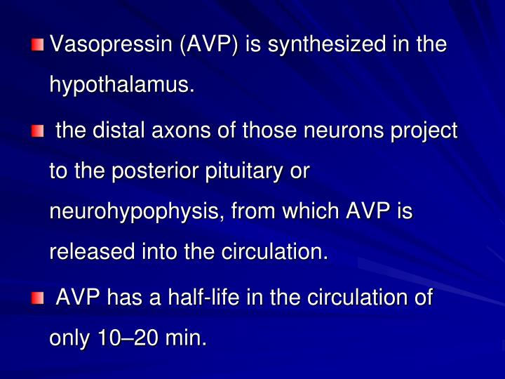 Vasopressin (AVP) is synthesized in the hypothalamus.