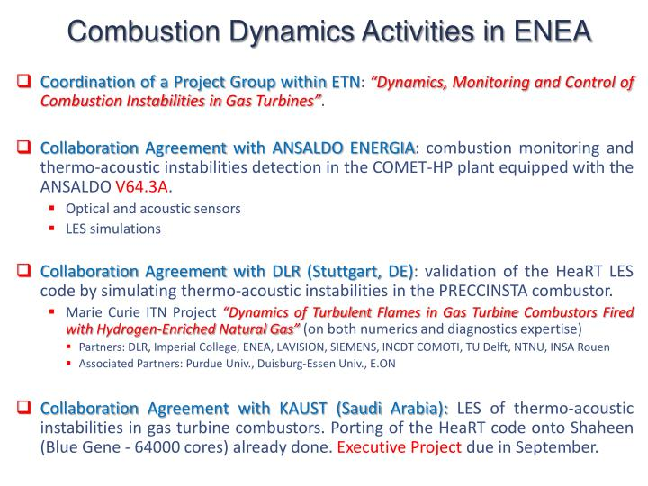 Combustion Dynamics Activities in ENEA