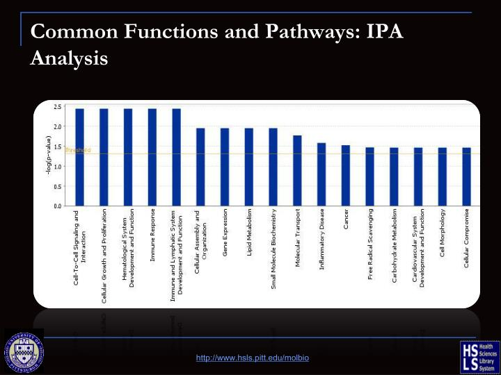 Common Functions and Pathways: IPA Analysis