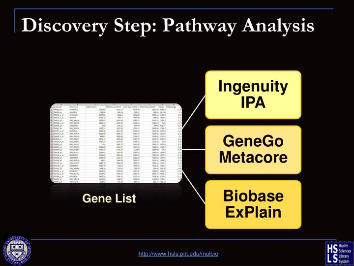 Discovery Step: Pathway Analysis