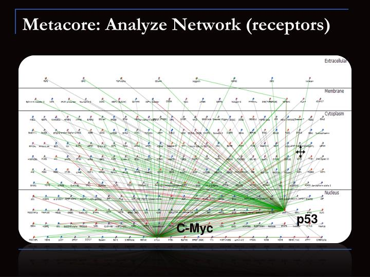 Metacore: Analyze Network (receptors)