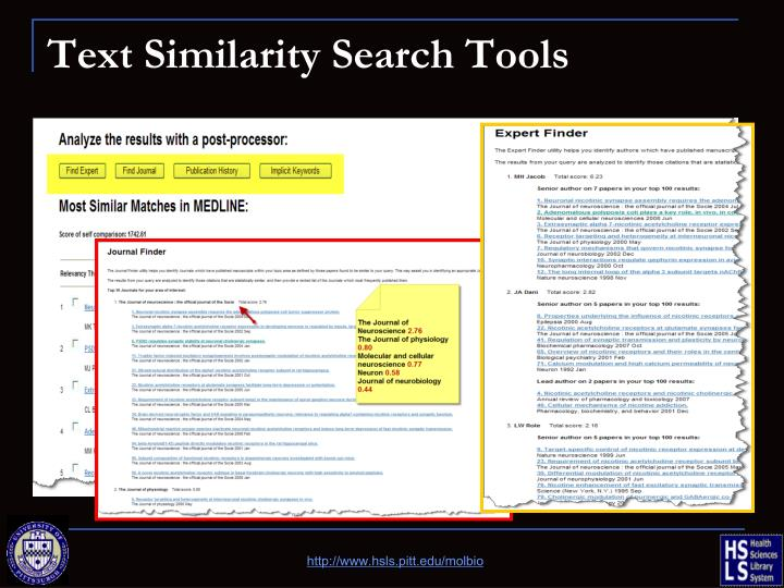 Text Similarity Search Tools
