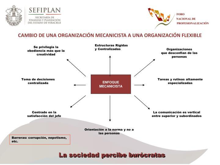 CAMBIO DE UNA ORGANIZACIÓN MECANICISTA A UNA ORGANIZACIÓN FLEXIBLE