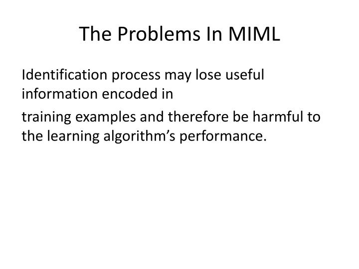 The Problems In MIML