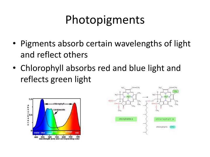 Photopigments