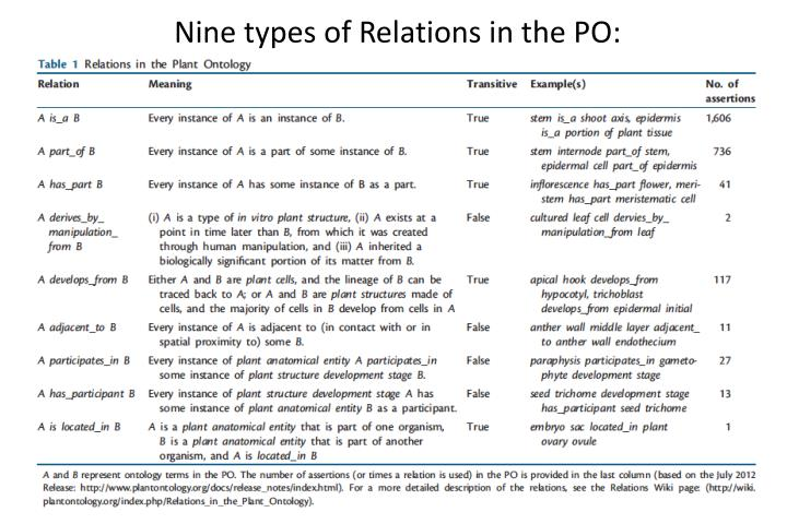 Nine types of Relations in the PO