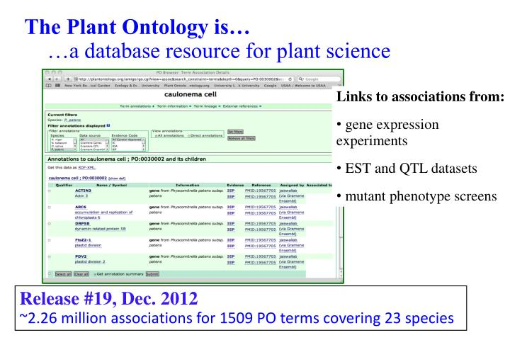 The Plant Ontology is…