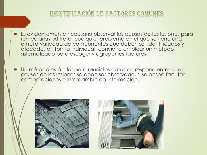Identificación de factores comunes