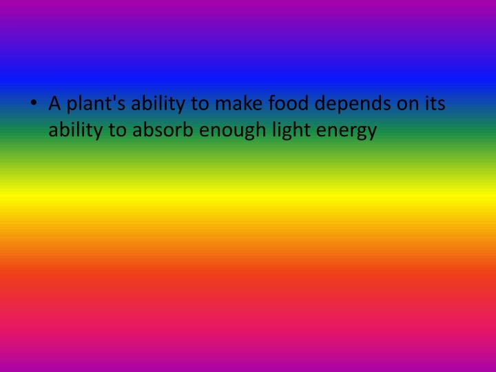 A plant's ability to make food depends on its ability to absorb enough light
