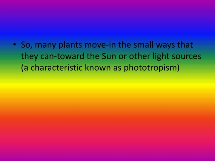 So, many plants move-in the small ways that they can-toward the Sun or other light sources (a characteristic known as phototropism