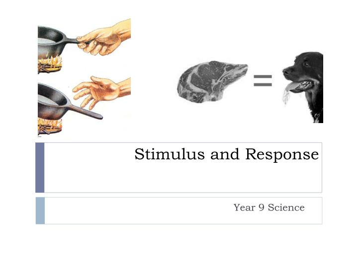 stimulus and response