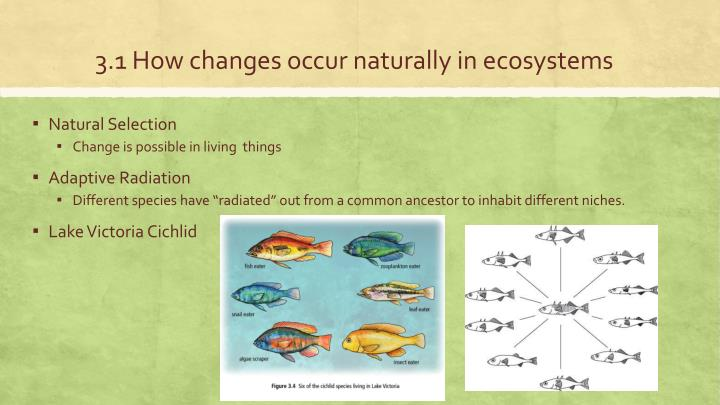 3.1 How changes occur naturally in ecosystems