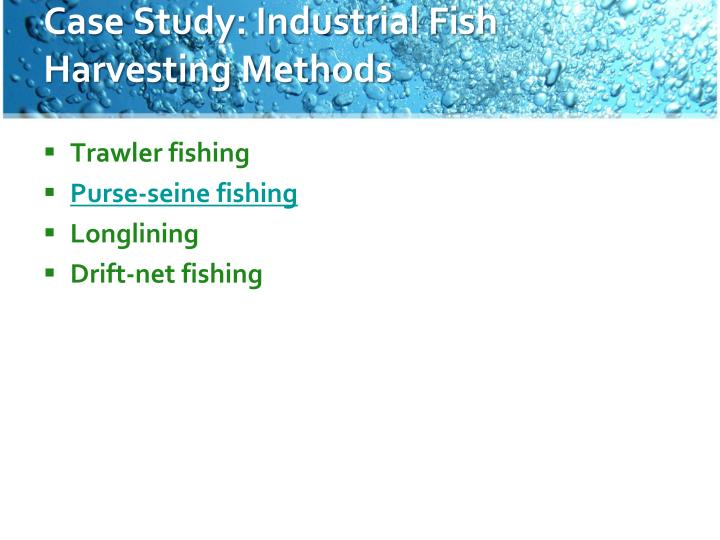 Case Study: Industrial Fish Harvesting Methods