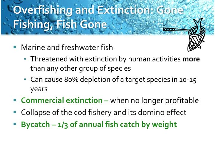 Overfishing and Extinction: Gone Fishing, Fish Gone
