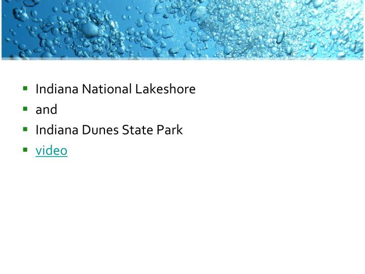 Indiana National Lakeshore