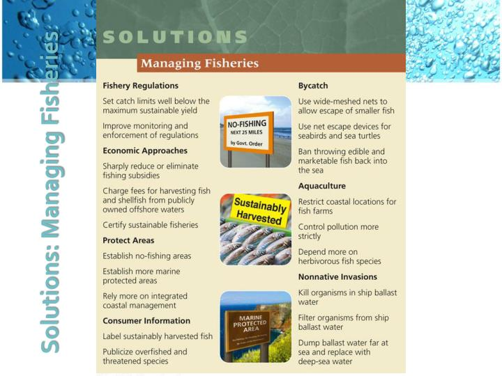 Solutions: Managing Fisheries