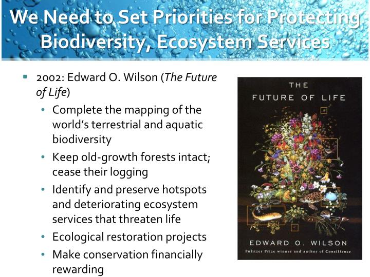We Need to Set Priorities for Protecting Biodiversity, Ecosystem Services