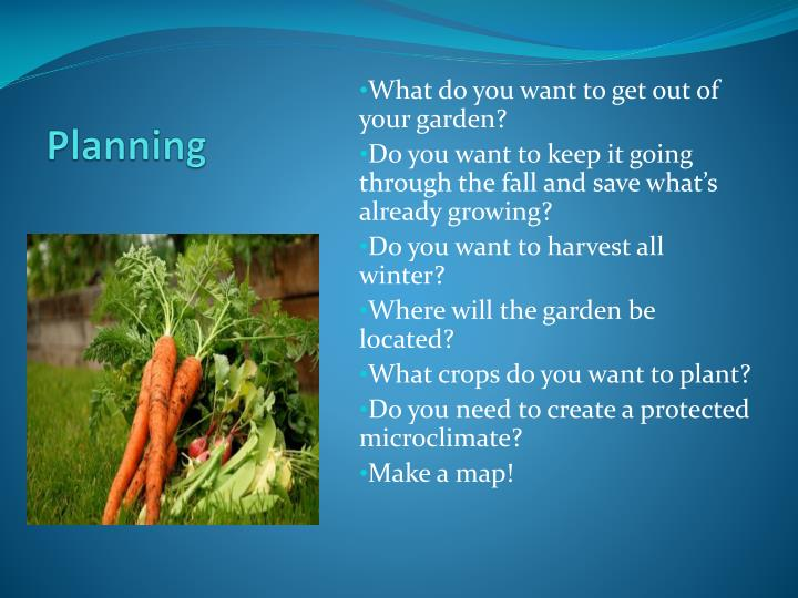 What do you want to get out of your garden?