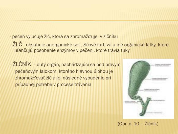 - pečeň vylučuje žlč, ktorá sa zhromažďuje  v žlčníku