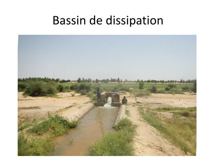 Bassin de
